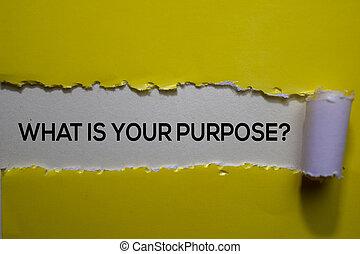 szétszakít újság, -e, mi, szöveg, írott, purpose?