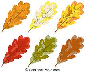 szín, ősz kilépő, gyűjtés