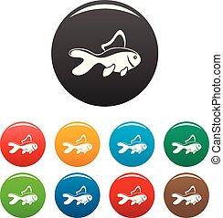 szín, fish, állhatatos, akvárium, ikonok