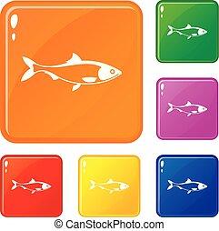 szín, fish, vektor, állhatatos, ikonok