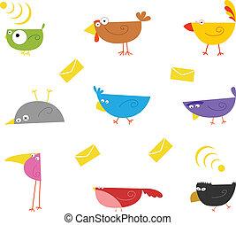 szín, madarak