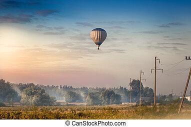 színes, balloon, repülés, reggel, korán, mező, erdő, felett