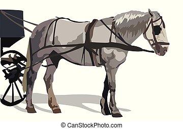 színes, vektor, ló