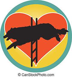 szív, agilitás, kutya