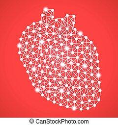 szív, elszigetelt, vektor, háttér., emberi, piros, illustration.