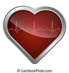 szív, kardiogram