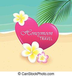 szív, levél növényen, frangipani, utazás, nászút, tropikus, tervezés, pálma, menstruáció, tengerpart