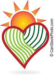 szív, szeret, nap, zöld, jel, mezőgazdaság
