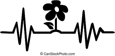 szívdobbanás, egyenes, virág, fekete, kertész