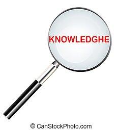 szó, tudás, szín, kutató, kijelölt, nagyítóüveg, vagy, piros, ikon