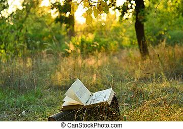 szüret, alatt, fa, költészet beír, szabadban
