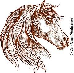 szüret, ló, skicc, vad, fej