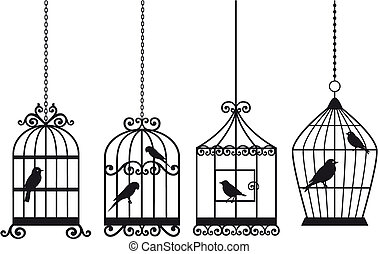 szüret, madarak, birdcages