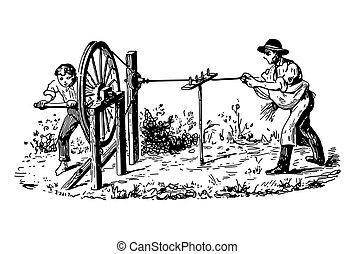 szüret, mező, két, metszés, férfiak