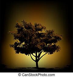 szüret, vektor, árnykép, háttér, fa