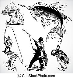 szüret, vektor, halászat, grafika