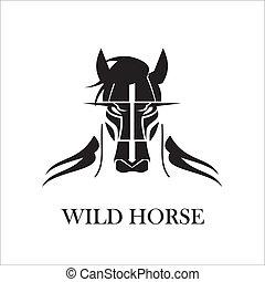 szőrös, vad ló, fekete