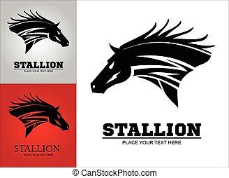 szőrös, vad, nagy, fekete, horse.