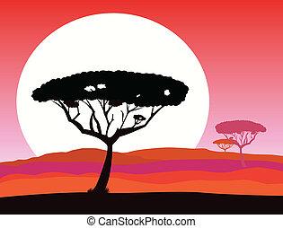 szafari, háttér, afrikai