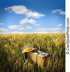 szalmaszál kalap, öreg, mező, bőrönd