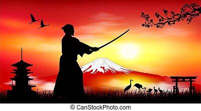 szamuráj, japán, táj, harcos