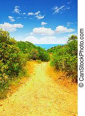 szardínia, tenger, út