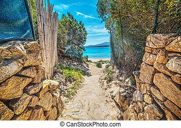 szardínia, tengerpart, út
