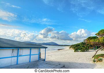 szardínia, tengerpart gátol, tenger