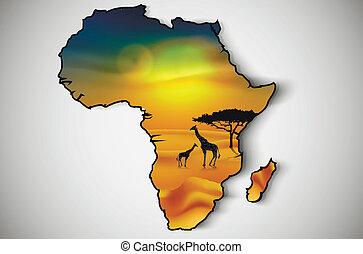 szavanna, fauna, növényvilág, afrika