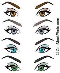 szemöldök, szemek, állhatatos, gyakorlatias, vektor, női, karikatúra