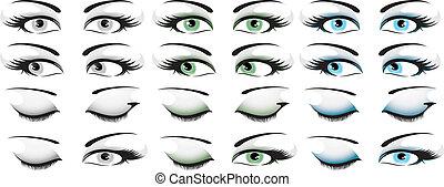 szem, állhatatos, 2