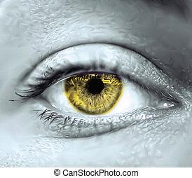 szem, vektor, macro., sárga, női