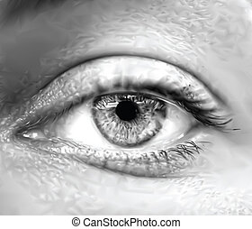 szem, vektor, macro., szürke, női