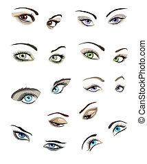 szemek, állhatatos, woman's