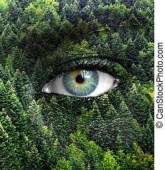 szemek, fogalom, természet, -, zöld erdő, emberi, megment