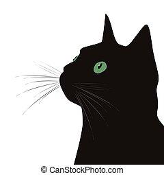 szemek, macska, zöld háttér, fekete, fehér