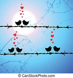 szeret, madarak, elágazik, csókolózás