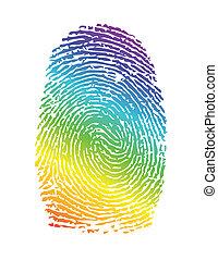 szivárvány, thumbprint., büszkeség, ábra, ujjlenyomat