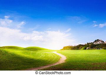 táj, eredet, elhomályosul, fű, út, zöld