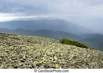táj, hegy, carpathians