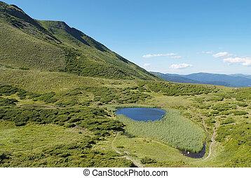 táj, hegy, carpathians, tó