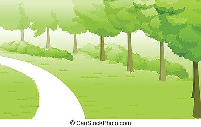 táj, zöld, út