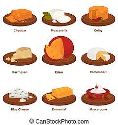 tápláló, sajt, állhatatos, élelmiszer, elszigetelt, finom, ábra, monochrom