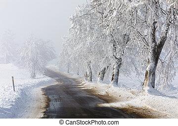 tél, vidéki táj, haladó, köd, vidéki út