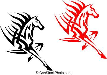törzsi, csődör, amerikai félvad ló