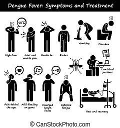 tünetek, aedes, dengue, bánásmód