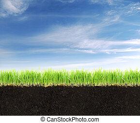 talaj, kék, vidék, fű, sky., keresztmetszet