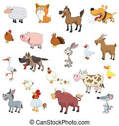 tanya, állhatatos, állatok
