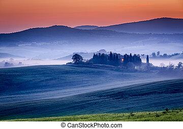 tanya, berkek, reggel, szőlőskert, olajbogyó, ködös