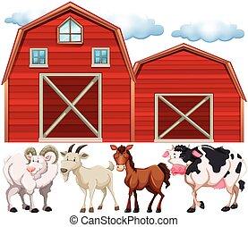 tanya, farmház, állatok